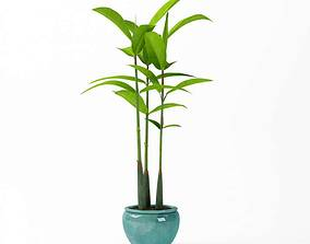 3D Green Plant With Blue Vase