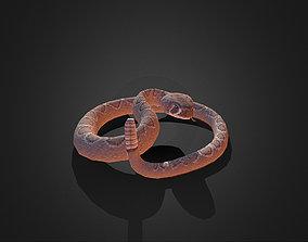 3D asset Low Poly Dessert Rattle Snake