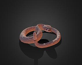 Low Poly Dessert Rattle Snake 3D asset