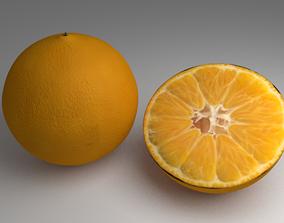 3D Rigged Orange
