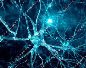 Neurons-fly-through 3D animated