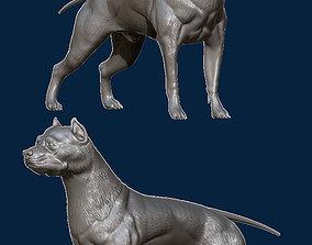 Pitbull 3D printable model