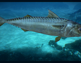 Mackerel 3D asset