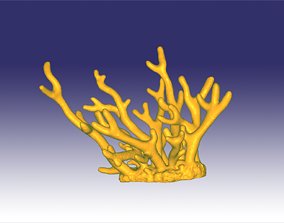 3D print model Staghorn coral