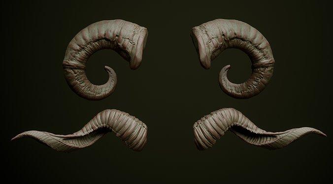 Horns_RS_013.jpg