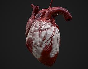 3D asset PBR Heart