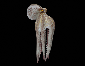 nature 3D Animated Octopus