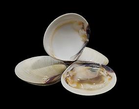 White clams 3D model
