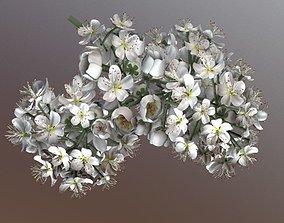 Rowan Blossom Low-Poly 3D asset