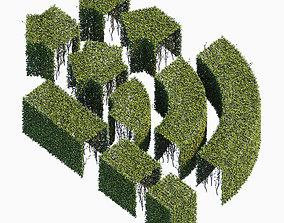 Hedge 400x600 3D
