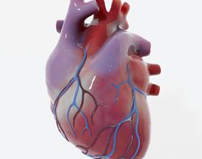 3D asset Human Heart aorta