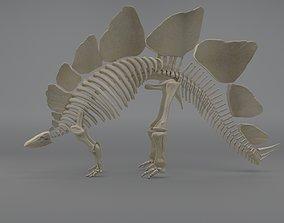 3D model Stegosaurus Skeleton evolution
