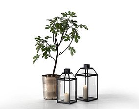 3D Lanterns and Planter with Fig Tree outdoor
