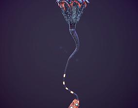 Fantastic medusa 3D asset