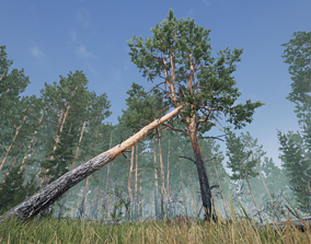 Realistic Pine Tree Pack for games 3D model