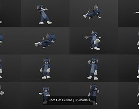 Tom Cat Bundle 3D model