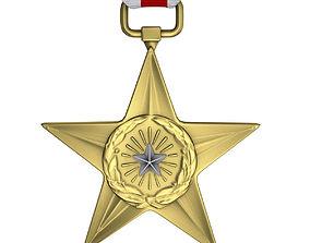 USAF Silver Star Medal 3D
