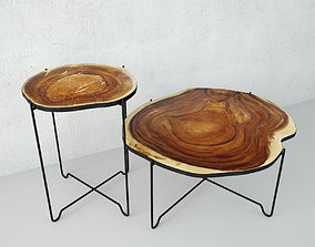 3D model Wood Slice Coffee Tables