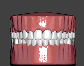 3D asset mouth