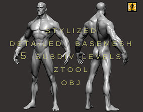 Stylized male body basemesh 3D asset realtime