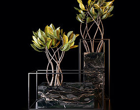 3D Croton trees