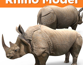3D rhino rhinoceros realistic Model game-ready