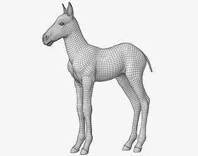 Horse Foal Lowpoly 3D model