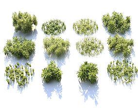 Plants of bushes HD 3D model